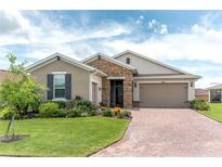 View 393 Treviso Dr Kissimmee FL