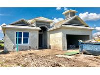 View 1009 Hamilton Ct Davenport FL