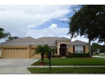 View 1045 Jilliam Way Winter Garden FL