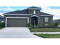 View 2541 Egret Loop Kissimmee FL