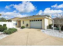 View 7861 171St Buchanan Pl The Villages FL