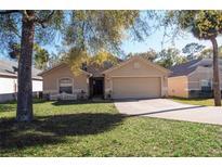View 680 Blue Park Rd Orange City FL