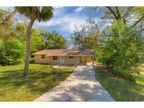 View 820 S Carpenter Ave Orange City FL